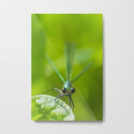 The delicate lady Metal Print