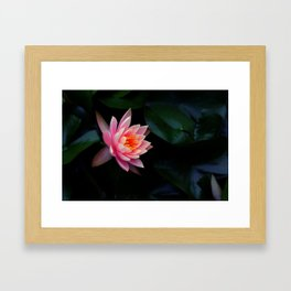 Birth of Beauty Framed Art Print