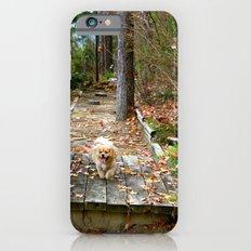 Autumn Stroll iPhone 6s Slim Case
