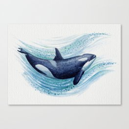 """Orca Spash"" by Amber Marine ~ Watercolor Killer Whale Painting, (Copyright 2016) Canvas Print"