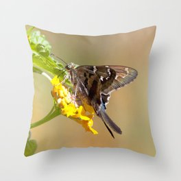 Watercolor Butterfly, Long-tailed Skimmer Butterfly 01, Gulf Island Beach, Florida Throw Pillow