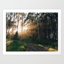 Bolinas Light Rays Art Print