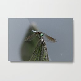 Launch Pad Metal Print