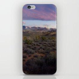 Dusk at Arches National Park Moab, UT iPhone Skin