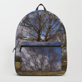 Birch On The Common Backpack