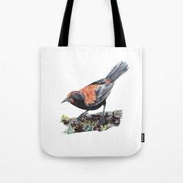 New Zealand Saddleback Tote Bag