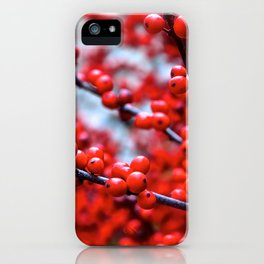 Festive Berries 2 iPhone Case