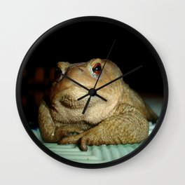 A Common Toad With Philosophical Disposition Wall Clock