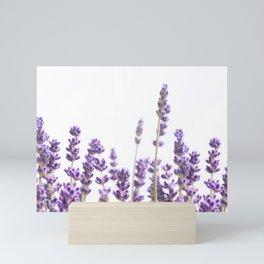 Purple Lavender #4 #decor #art #society6 Mini Art Print