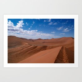 namib Art Print