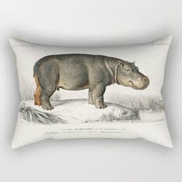 Old Vintage Illustration Of A Hippo Rectangular Pillow