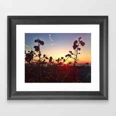 Looking beyond the Obvious Framed Art Print