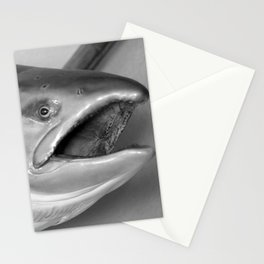 Here Fishy Fishy Stationery Cards