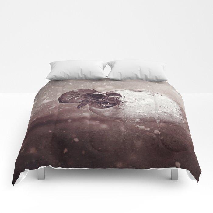Harsh Conditions Comforters