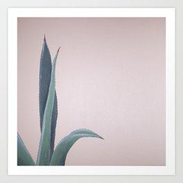 Aloe Vera Acrylic Art Print