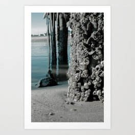 Land Meets Water Abstract Coastal / Seascape / Nature Photograph Art Print