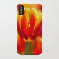 tulip iPhone & iPod Cases featuring Tulip by Tracie Brown
