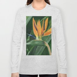 Simply Elegant by Teresa Thompson Long Sleeve T-shirt
