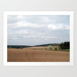 Field outside the city, agriculture plants Art Print