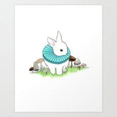 Baby Bunny Art Print