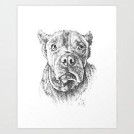 """Earl"" the Rescue Cane Corso Art Print"