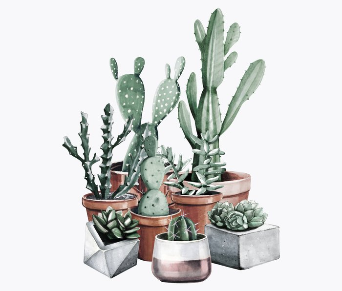 Potted Cacti + Succulents Rose Gold Metal Travel Mug