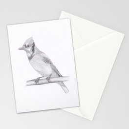 Blue Jay drawing Stationery Cards
