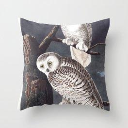 Snowy owl, Birds of America, Audubon Plate 121 Throw Pillow