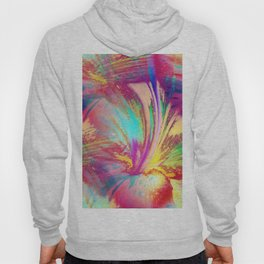 Lily Abstract Hoody