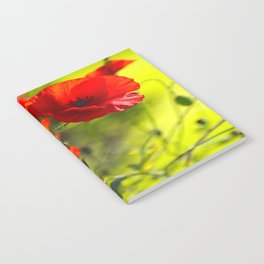 Red Poppies on green background #decor #society6 #buyart Notebook