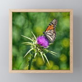 monarch with mustard Framed Mini Art Print