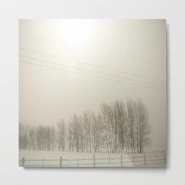 Winter 4 Metal Print
