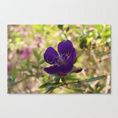 Lavender Petals Canvas Print