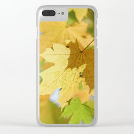 Early autmn maple leaf Clear iPhone Case