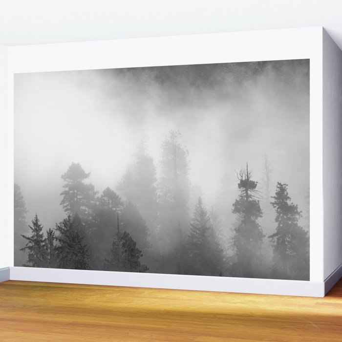 Harmony - Misty Mountain Forest Nature Photography Wall Mural
