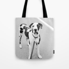 Harlequin Angel Puppy Tote Bag