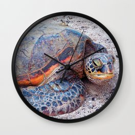 Cute, fun Hawaii sea turtle relaxing on the beach close-up photo Wall Clock