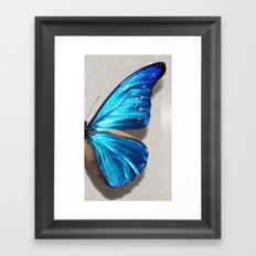 Morpho Framed Art Print