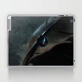 crow feather Laptop & iPad Skin