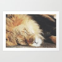 simba Art Prints featuring simba by Leanne Taylor Collection