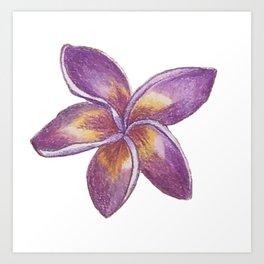 Purple Plumeria Art Print