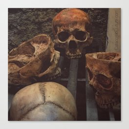 Catacomb Culture - Human Skull Basement Canvas Print