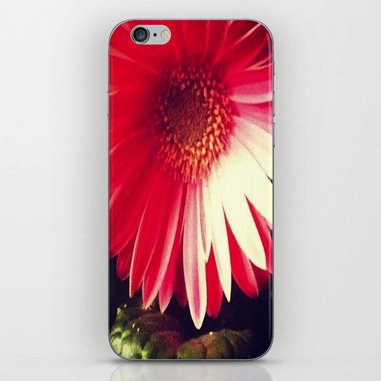 Gerber iPhone & iPod Skin