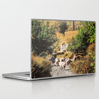sheep Laptop & iPad Skins featuring Sheep by Mr and Mrs Quirynen