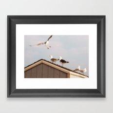 Up on the roof  Framed Art Print