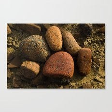 What makes up the Baja? Canvas Print