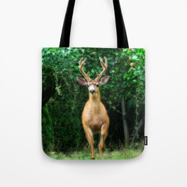 Still In Velvet Tote Bag