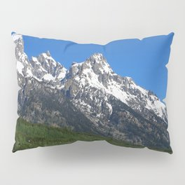 Fascinating Nature Pillow Sham