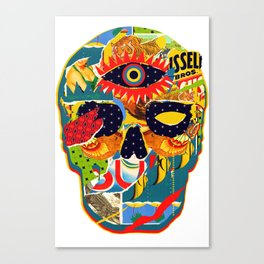 Three Eyed Skull Canvas Print