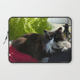 The Feline Queen Reposes (Gracie Queen of Chicago Collection) Laptop Sleeve